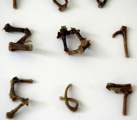Alphabet en branchages de raisins - cali rezo - photos
