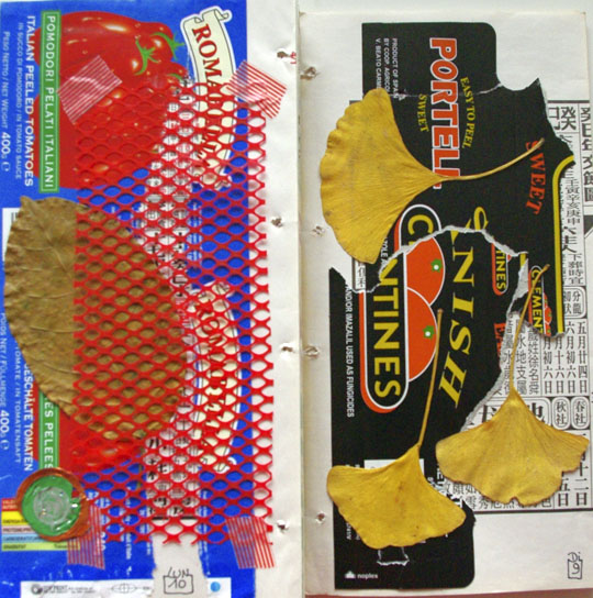 collages 2012 - cali rezo