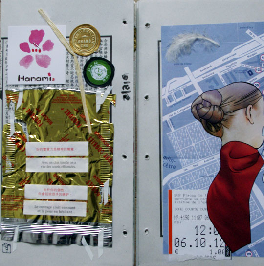 collages de novembre 2012 - cali rezo
