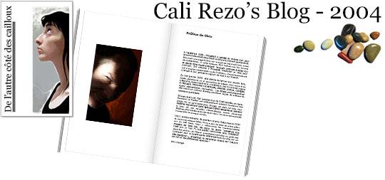 Bannière pour la préface du blog papier Cali Rezo 2004 - par Chex