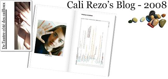 Bannière pour la préface du blog papier Cali Rezo 2008 - par Mina