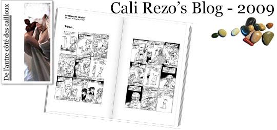 Bannière pour la préface du blog papier Cali Rezo 2009 - par Boulet