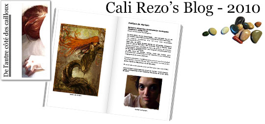 Bannière pour la préface du blog papier Cali Rezo 2010 - par Myriam