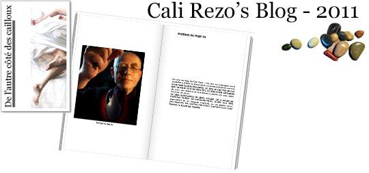 Bannière pour la préface du blog papier Cali Rezo 2011 - par Jo