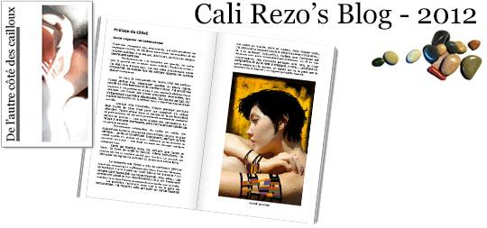 Bannière pour la préface du blog papier Cali Rezo 2012 - par Chloé