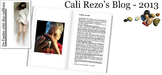 Bannière pour la préface du blog papier Cali Rezo 2013 - par Kiki