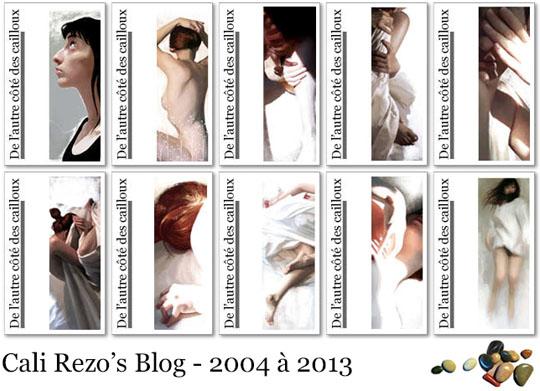 Blog Papier pub 01 couvertures de 2004 à 2013 - cali rezo blog